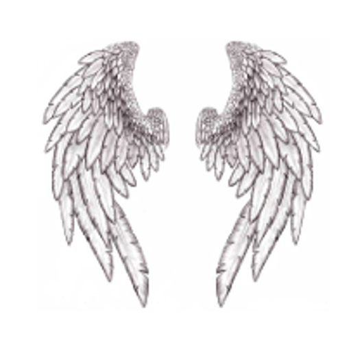 cropped-angel-wings-512x512.png