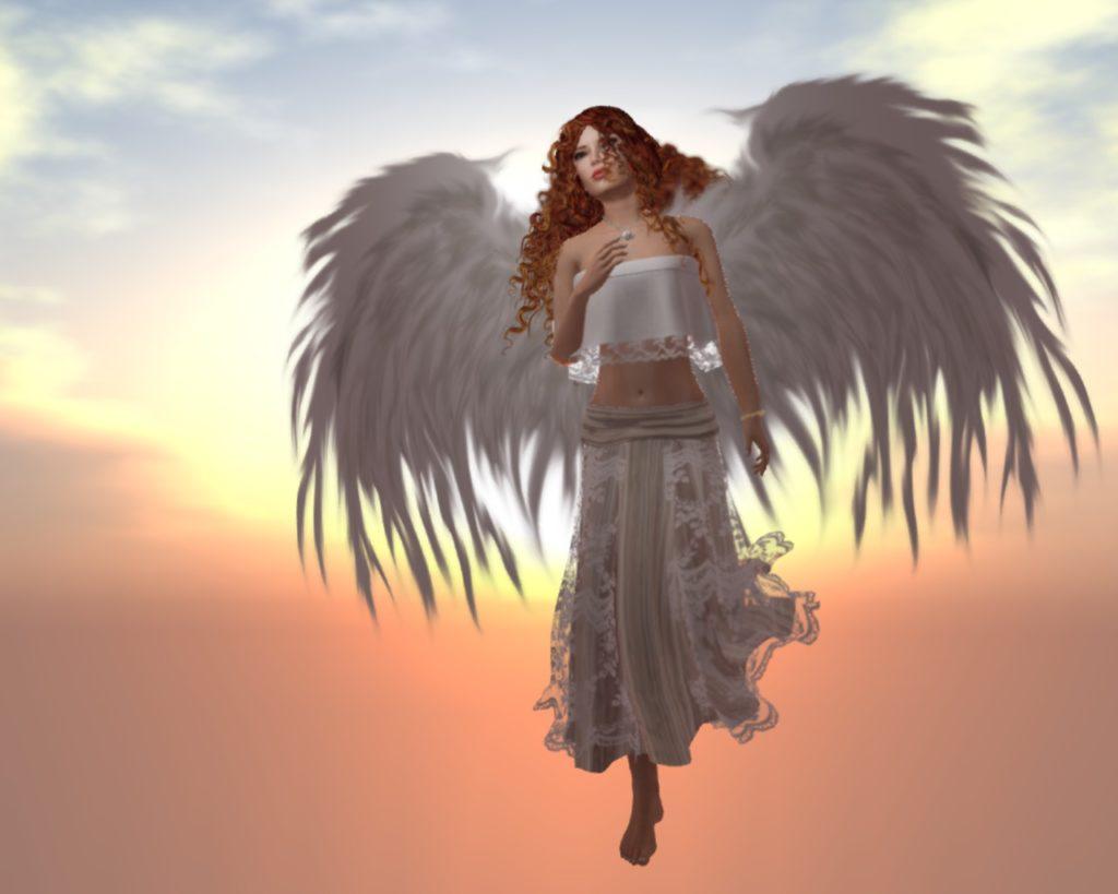 angel_c008